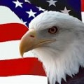 American Bald Eagle Symbol