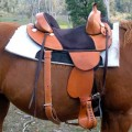 Austrian Saddle Stirrups