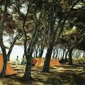 Camping in Spain