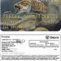 Canadian Fishing License