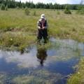 Canadian Peat Moss Association