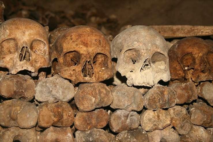 skulls, paris catacombs, paris france