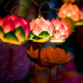 Chinese Lotus Flower Lantern