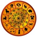 Chinese New Year Zodiac
