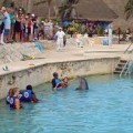 Costa Maya Excursions