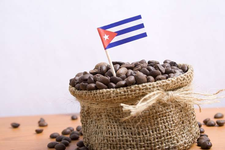 Cuban Coffee beans