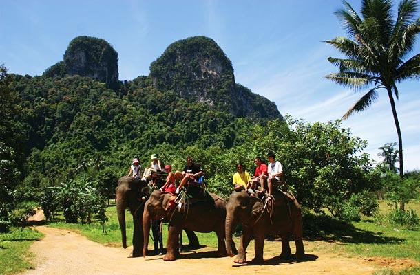 Elephant Trekking in Thailand