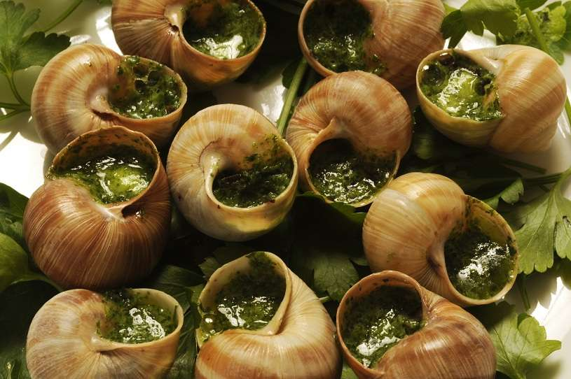 French snails