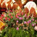 Indian Marriage Flower Decoration