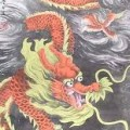 Long Chinese Dragon