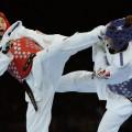 Non Korean Tae Kwon Do History