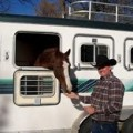 Southern California Horse Transportation