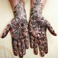 Traditional Indian Henna Designs