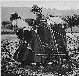 Women France World War I