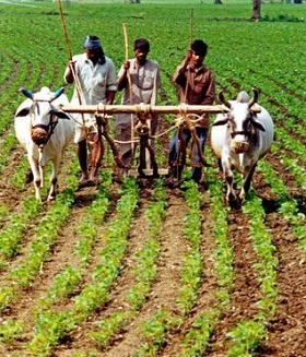 agricultural entrepreneurs in india
