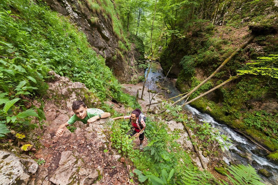 Brazil ecotours