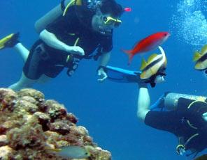 scuba diving in/u spain