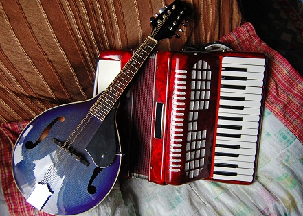 Irish mandolin and Accordian