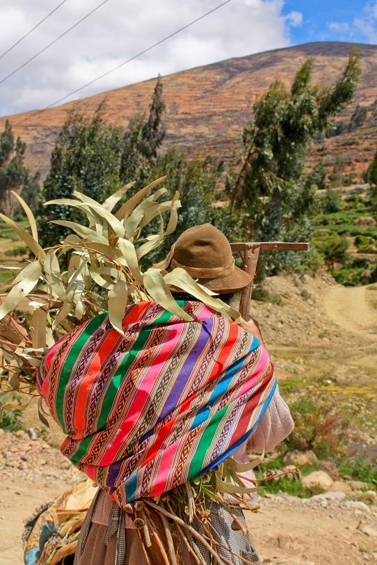 Bäuerin bei Feldarbeit, Südamerika