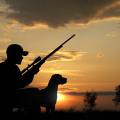 waterfowl hunting northern california