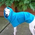 Italian Greyhound Jackets