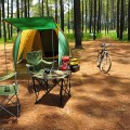 camping in zaton pine forest