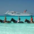 Nassau Bahamas Horseback Riding