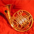 Double French Horns Made In China