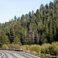 Big Bear Road Conditions