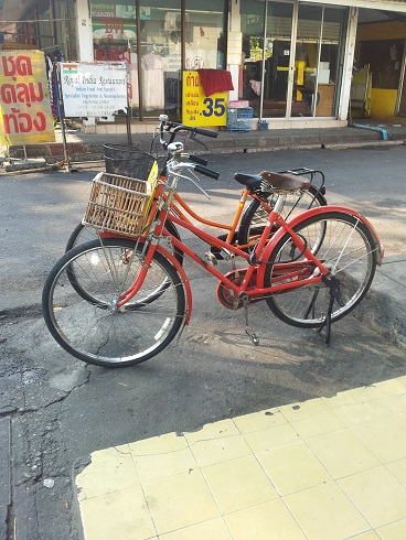 State-of-the-art bicycles for rent