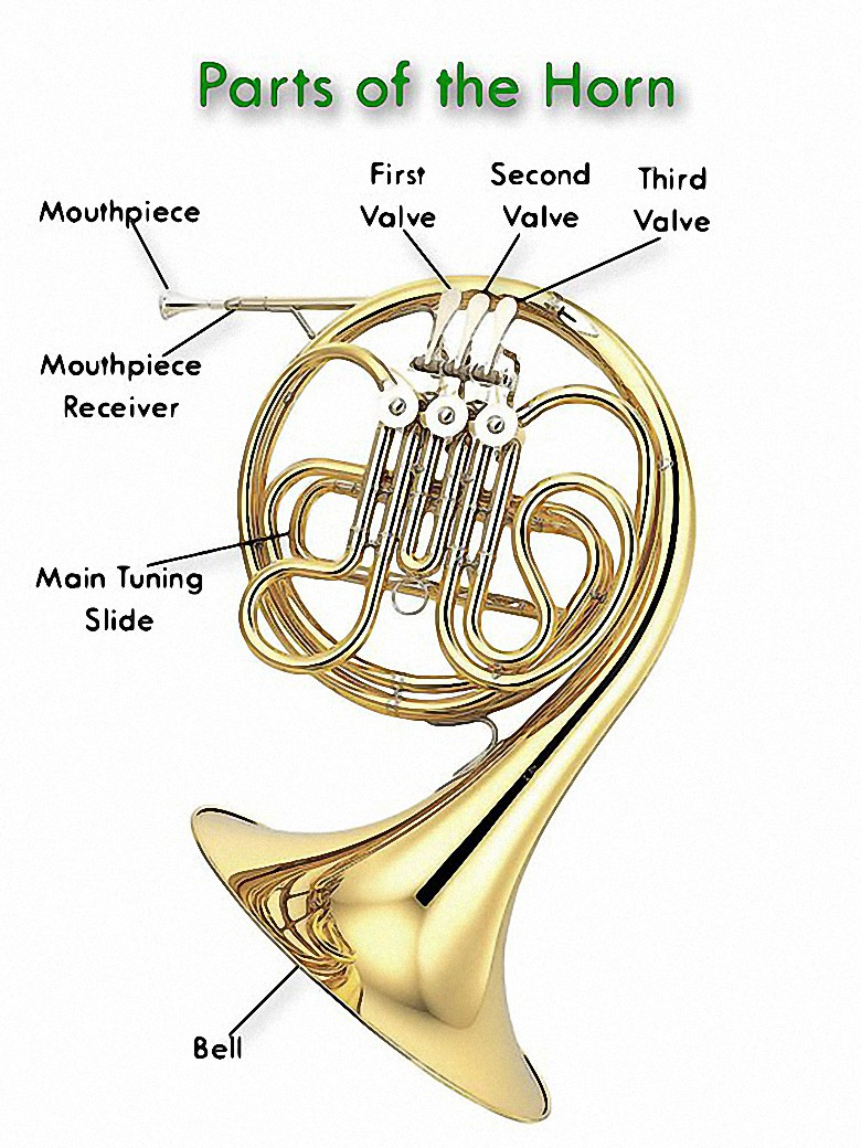 French Horn Parts