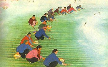 Nong Class– Peasant Farmers